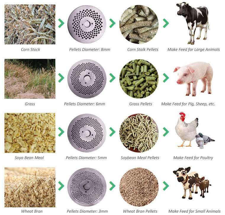cattle & sheep feed pellet production